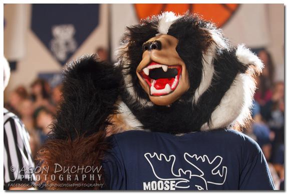 Moose Madness 20130111-IMG_9985